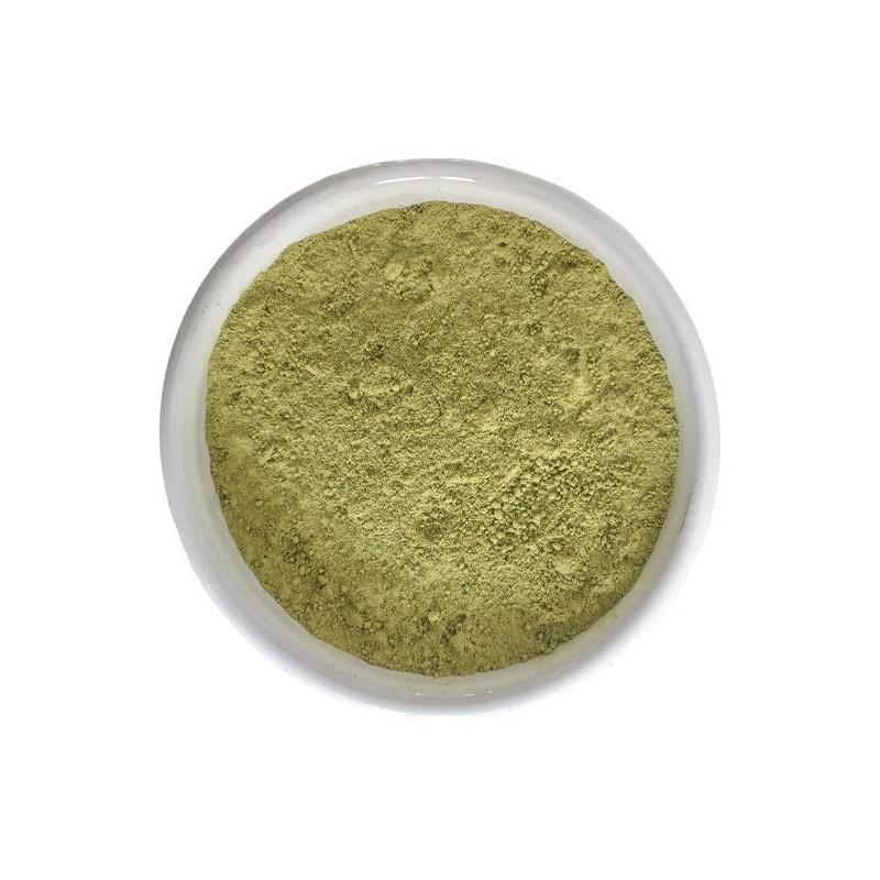Henné du Rajasthan BAQ