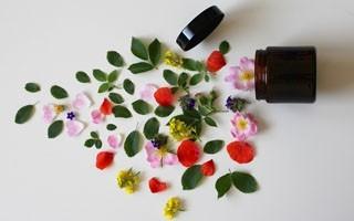 Les plantes, fleurs et graines